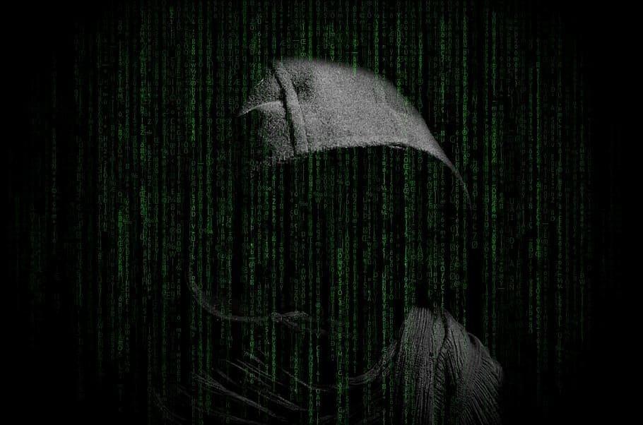 employee-data-theft